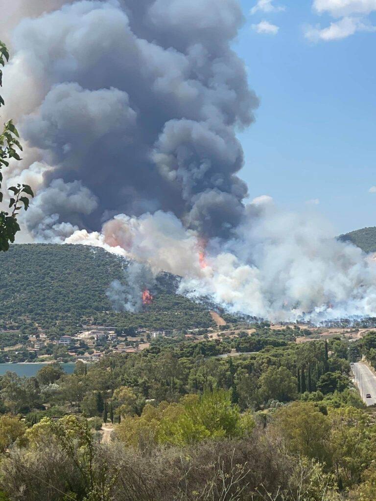 Νέα μεγάλη πυρκαγιά στις Κεχριές Κορινθίας - Εκκενώνονται οικισμοί ...